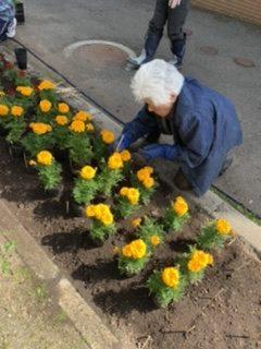 花苗を植えました・・・